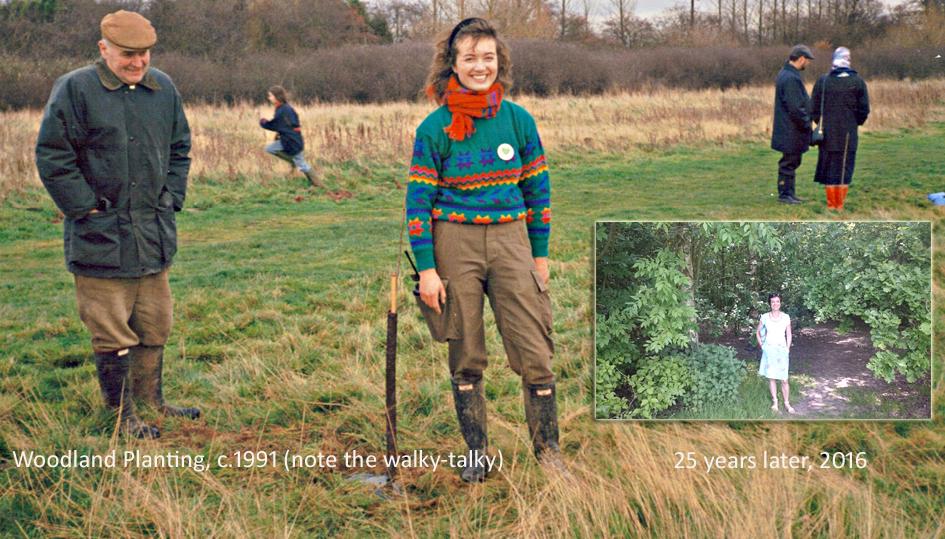 1991-Woodland-planting