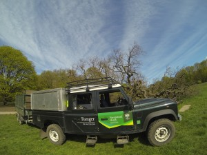 Hampstead Heath cruiser