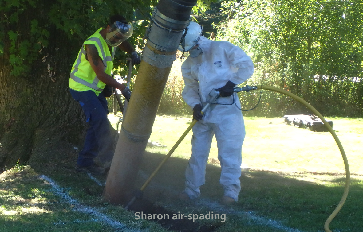 Sharo9n Hosegopod air spading